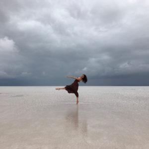 Tuz Gölü 2017