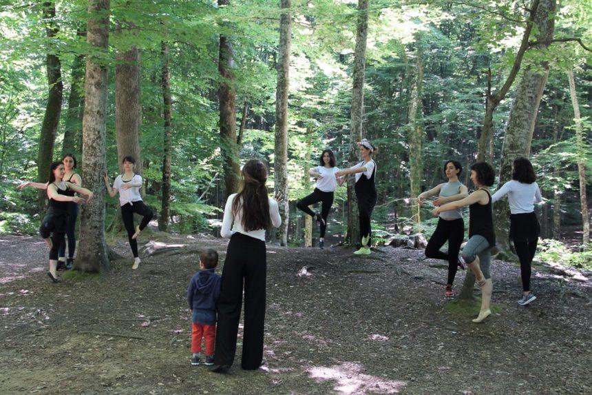 Belgrad Ormanı 2017