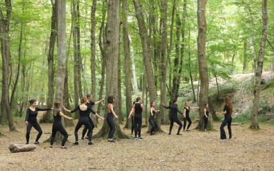 Belgrad Ormanı 2019